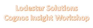 Cognos Insight Training