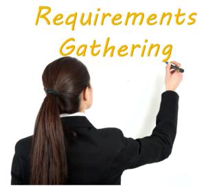 BI Requirements Gathering