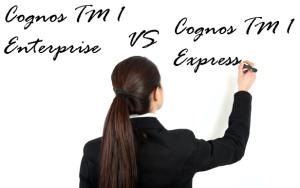 Cognos TM1 licensing
