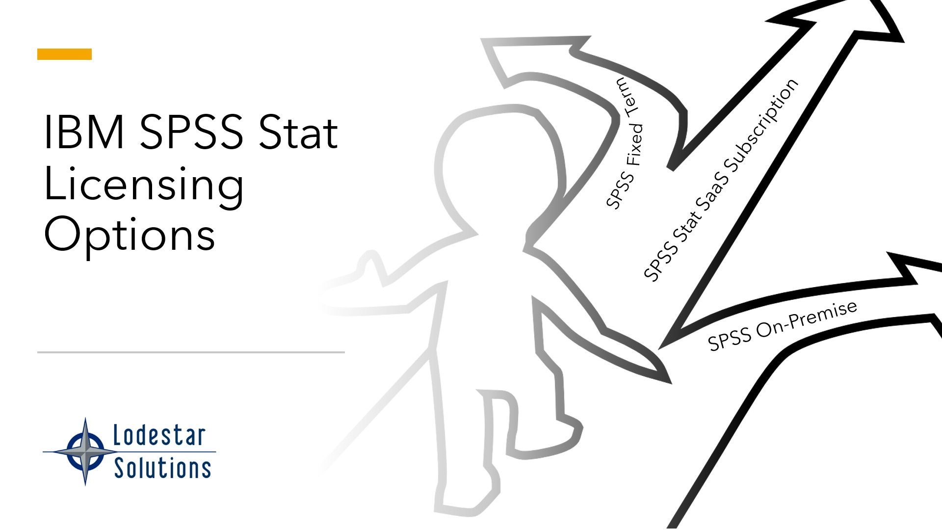 IBM SPSS Stat Options